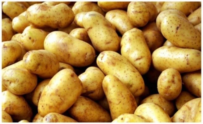 TÜK'ten tarlaya dökülen patatesle ilgili açıklama