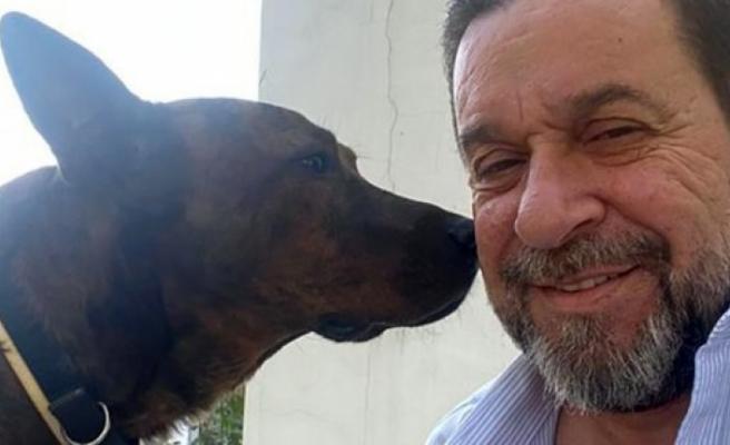 'Hayvan refahı yasasında ihtiyaç duyulan değişiklikleri meclise sundum'