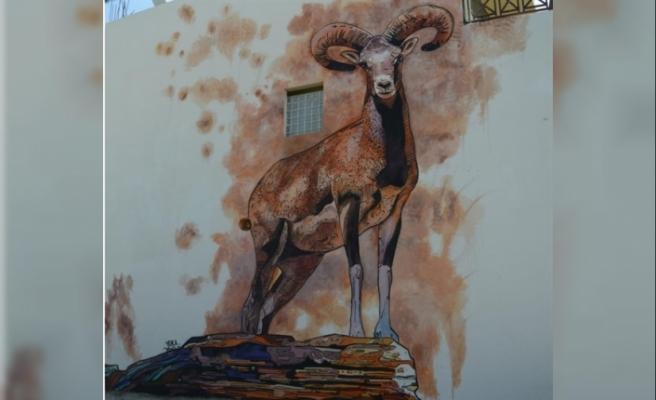 Lefke'ye farklı tarzda üç duvar resmi