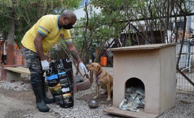 LTB, Hayvan Barınağı'ndaki sevimli dostlara güvenli ve sağlıklı bir ortam sunuyor