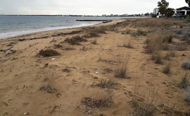 Çevre Koruma Dairesinden çevre temizlik kampanyaları