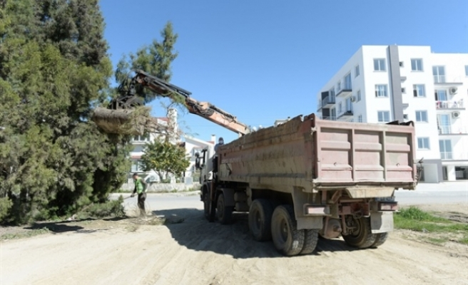 Gönyeli'de bahçe atıkları toplama çalışmalarına yeniden başladı