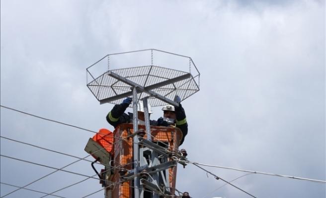 Tekirdağ'da leyleklerin akıma kapılmaması için elektrik direklerine özel platformlar kuruluyor