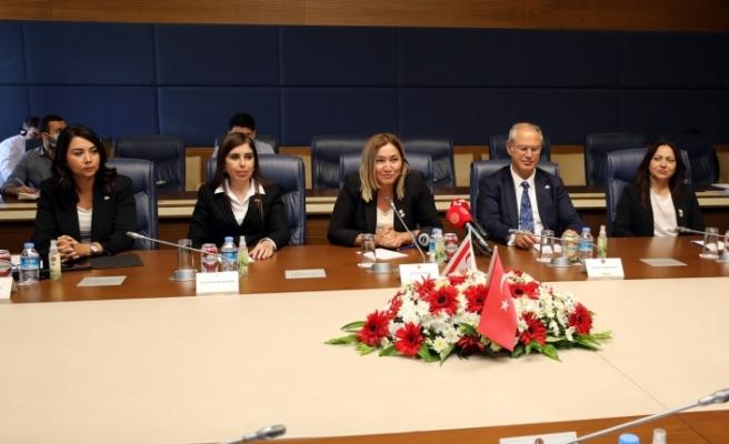 Hukuk, Siyasi İşler, Dış İlişkiler Komitesi Ankara'da