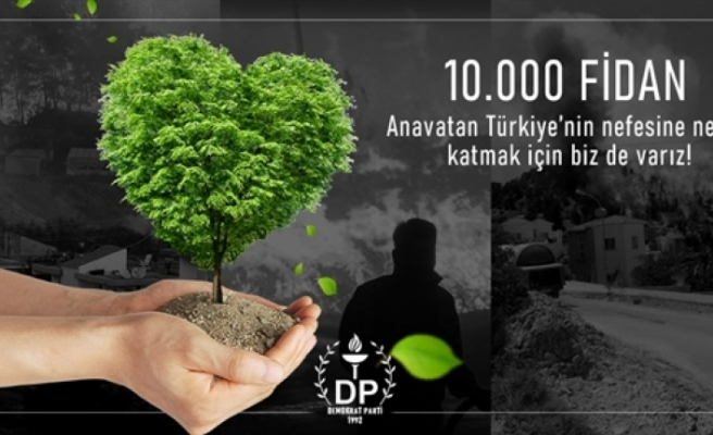 DP, Türkiye'de yangından etkilenen ormanlık alanlar için 10 fidan bağışladı