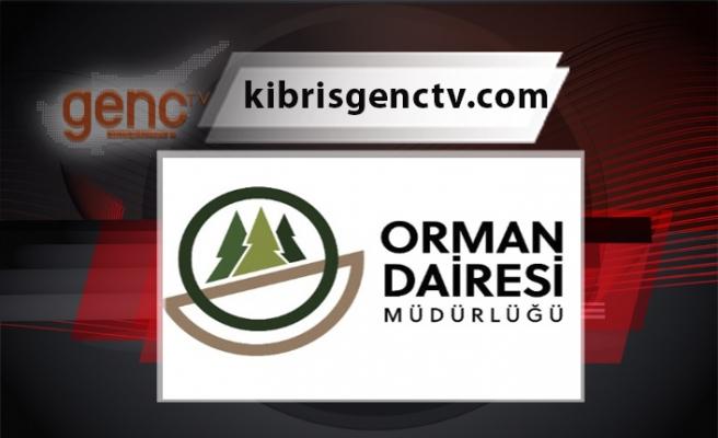 Ormanlık alanlara giriş yasağı 11 Ağustos Çarşamba'ya kadar uzatıldı
