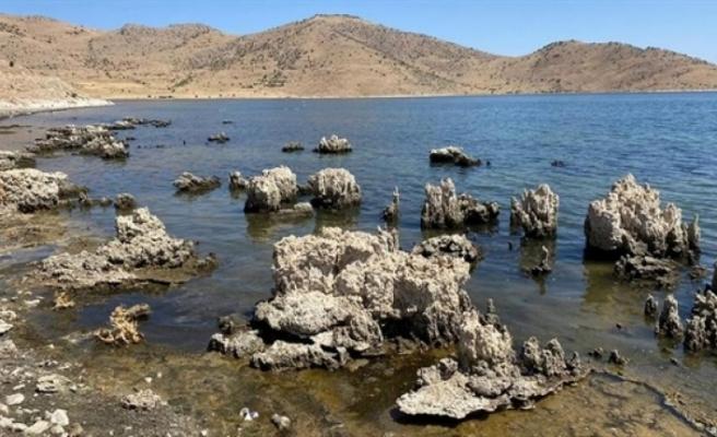 Van Gölü havzası susuzluk alarmı veriyor