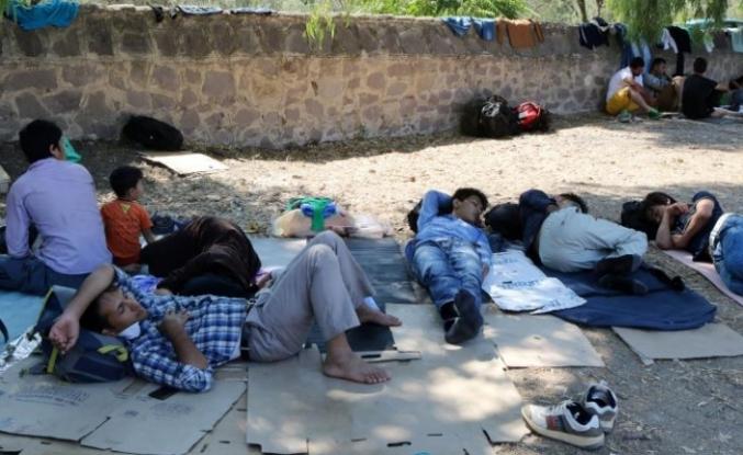 Güney Kıbrıs'ta 12 bin 410 mülteci koruma statüsünde